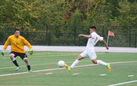 Boys' soccer team clinches playoff spot