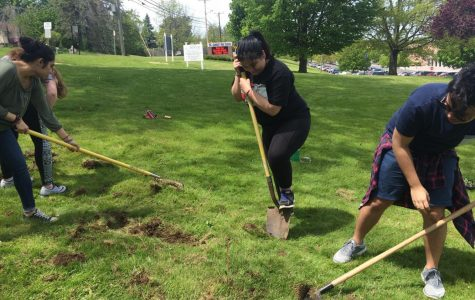 AP Human Geography students work to feed Danbury's hungry