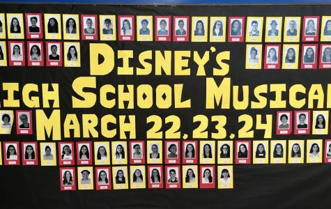 'Disney's High School Musical' takes to the DHS stage