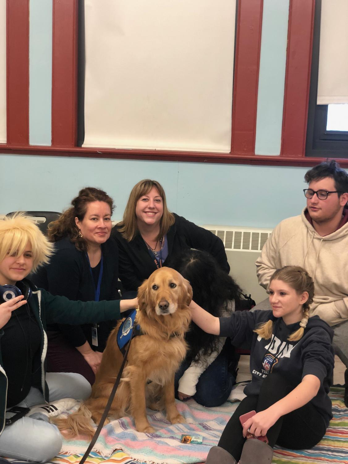 Learning about how to train comfort dogs was a big draw at this year's ACE Career Day Fair.